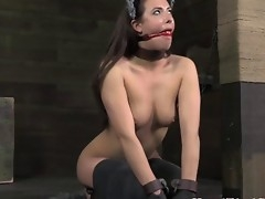 Lezdom submissive acts like an animal